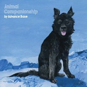 ADVANCE BASE - ANIMAL COMPANIONSHIP