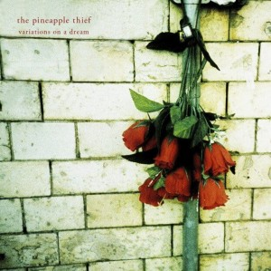 PINEAPPLE THIEF, THE  - VARIATIONS ON A DREAM (180 GRAM) (2LP)