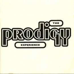 PRODIGY, THE - EXPERIENCE